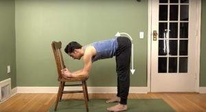 Anterior:posterior arrows