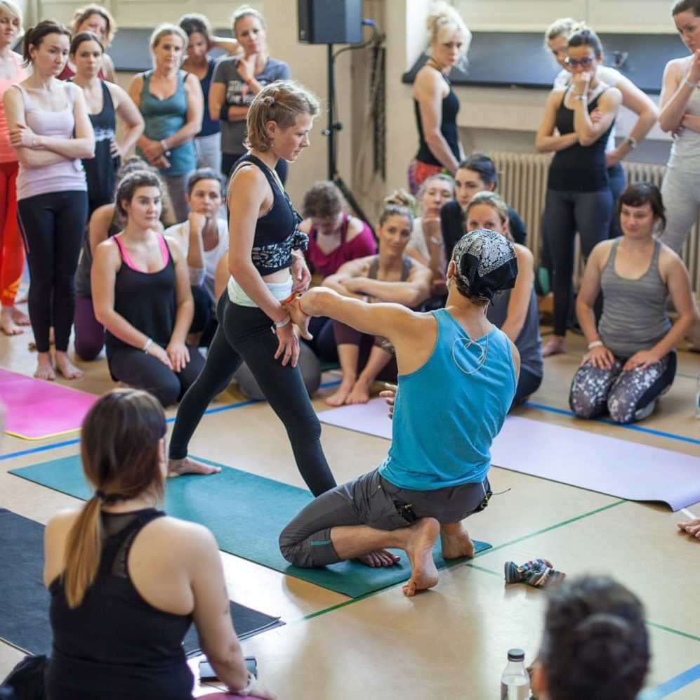 Chromatic Yoga Training Level 2