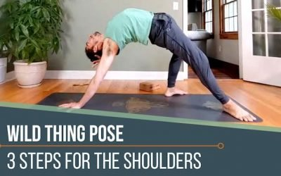 WILD THING YOGA POSE 3 SHOULDER ACTIONS