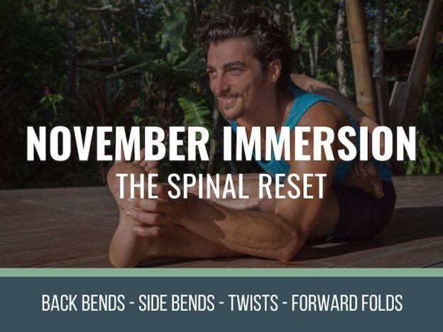 November Immersion course image