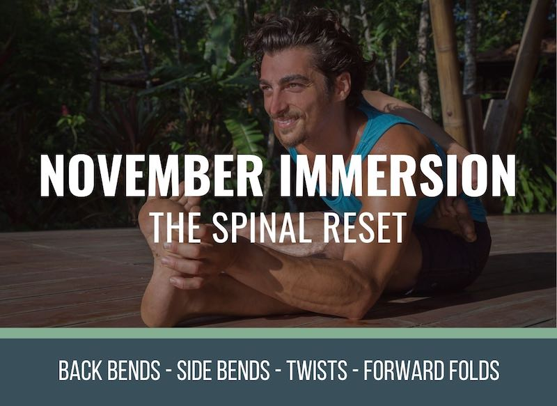 release low back pain in backbends with the spinal reset immersion