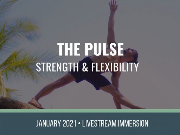 The Pulse January 2021 course image