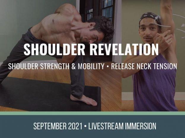 shoulder revelation course image